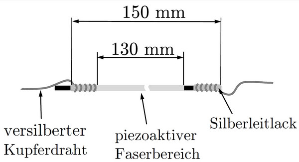 Aufbau gesamter Piezosensor